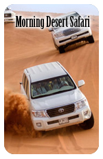 Morning desert safari, morning desert tour, morning jeep tour dubai, morning safari tour